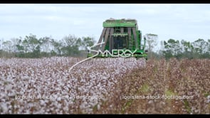 892 Nice low angle cotton harvest