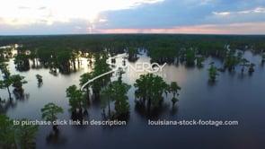 036 atchafalaya basin swamp aerial drone dolly back at suset