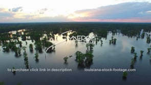 037 aerial drone henderson swamp atchafalaya basin swamp dolly in at sunset