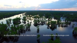 039 aerial drone henderson swamp atchafalaya basin dolly out
