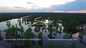 040 Nice shot atchafalaya swamp at evening sunset