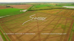 082 Epic awesome aerial view rice crops agriculture crop farming