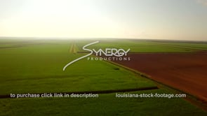 135 Morning sunrise with mist aerial drone view sugar cane field