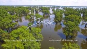 138 beautiful aerial view Lousiana swamp tourism travel