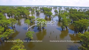 142 scenic cinematic Louisiana swamp aerial drone dolly