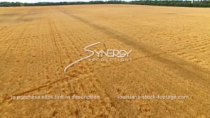 074 Dramatic epic aerial descending to wheat field dolly 2