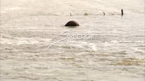 1306 Mississippi River flooding farmland bales of hay in flood water