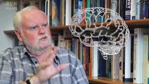 Watch David Whitebread - What is self-regulation?