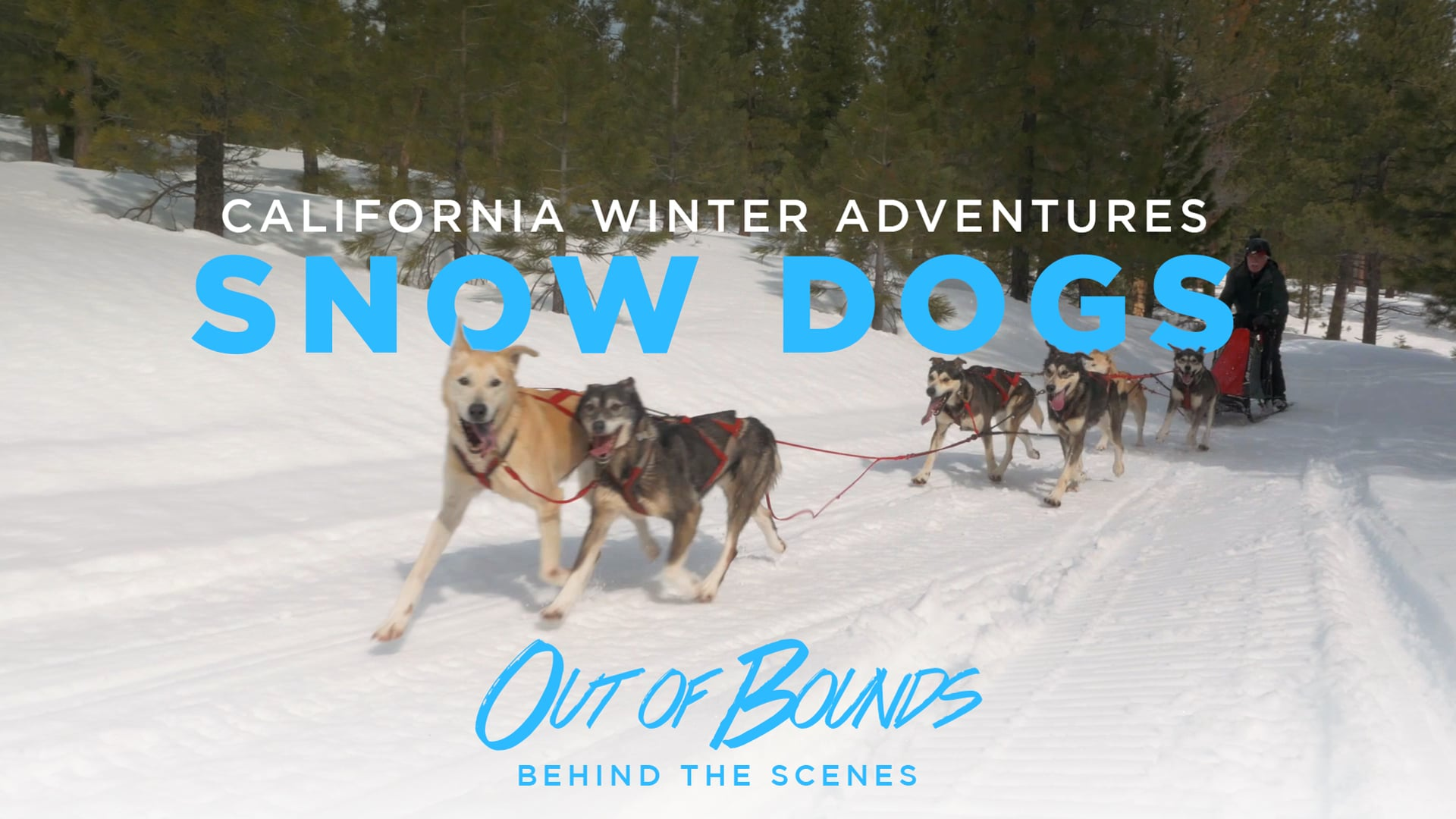Out of Bounds - Behind the Scenes 3 - California Winter Adventures: Snow Dogs