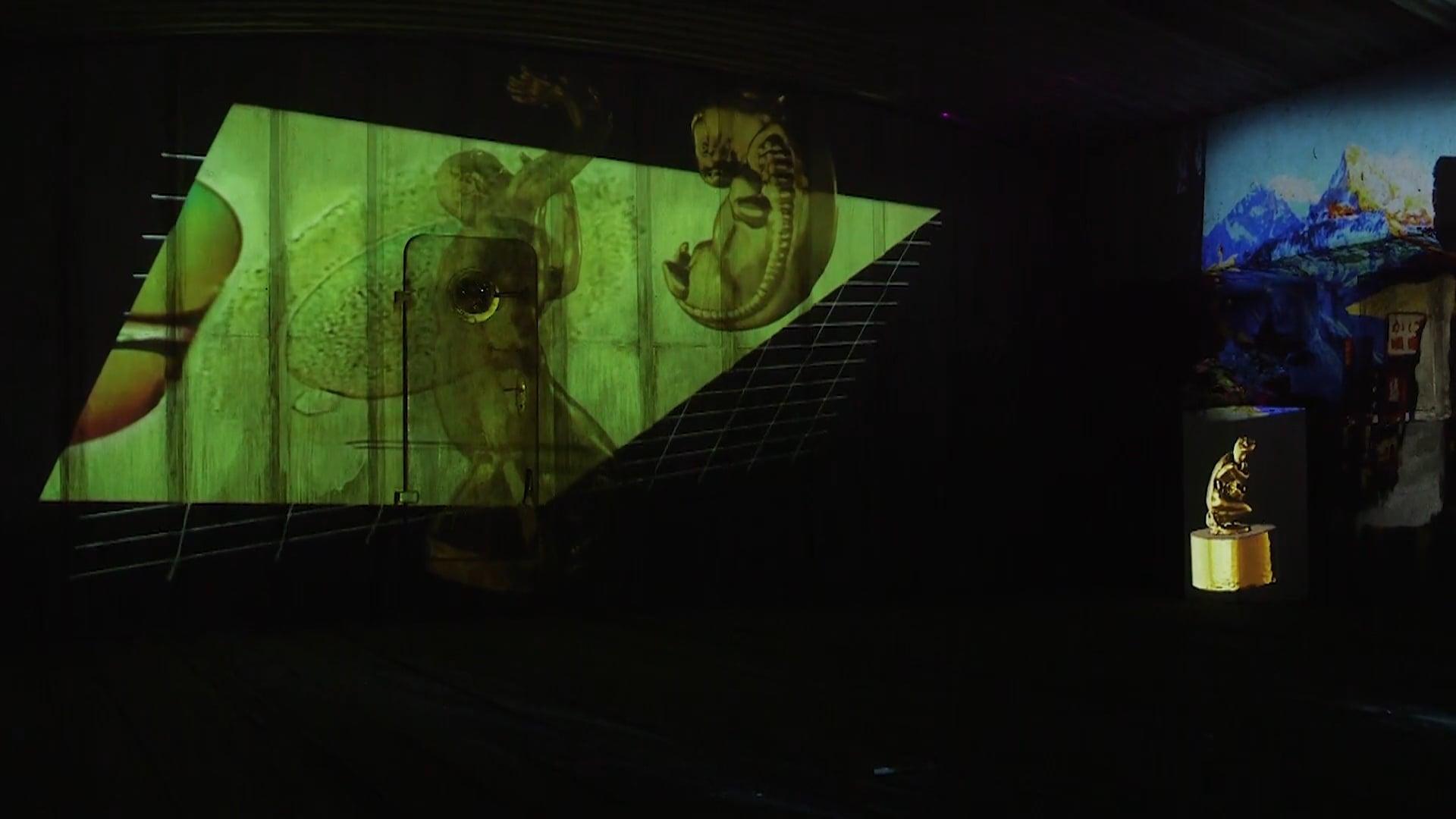 Phantasm (Long version) - Exhibition at Hošek Contemporary, Berlin (2019)