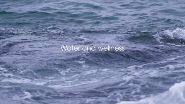 VOLA FS1 Water and Wellness