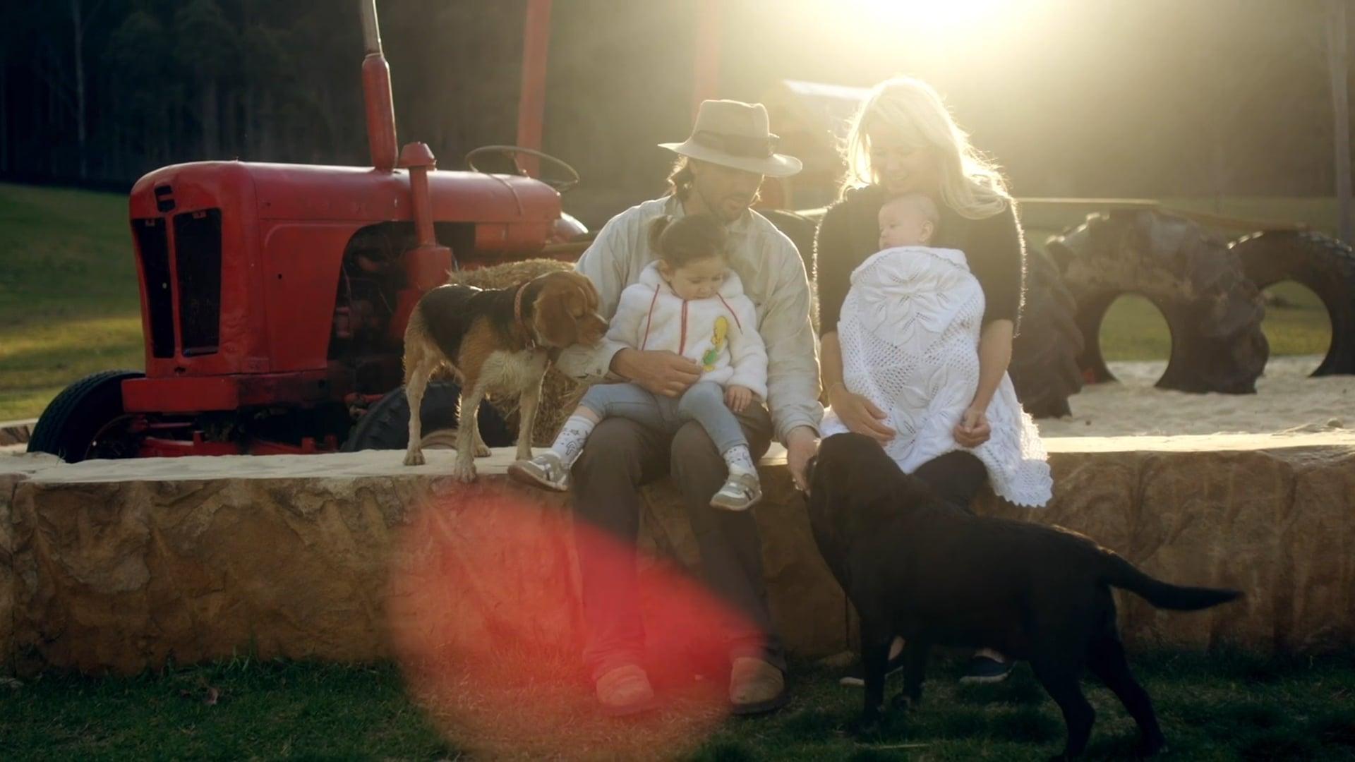Luke's Story - Doggy Daycare Farm Trips