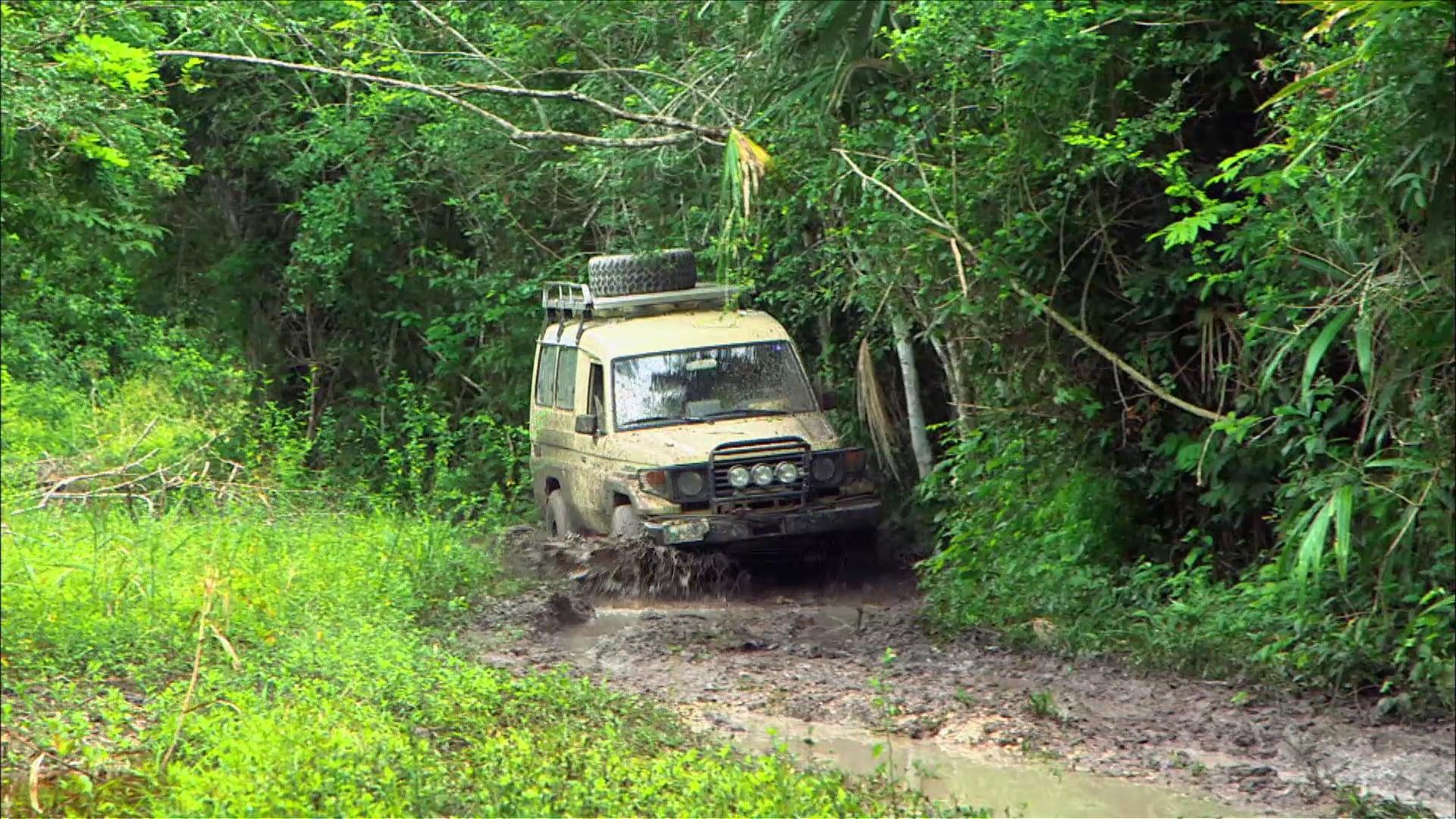 Journey to Tikal