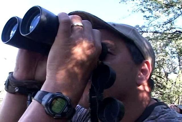 New Mexico Archery Elk Hunt (full episode)
