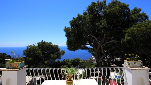 Stunning Villa in the heart of Capri