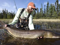 Fly Fishing for Monster Pike - Wolf Bay Lodge