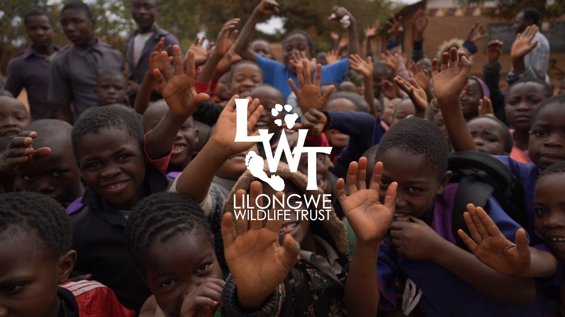 Lilongwe Wildlife Trust: Environmental Education for the Future of Malawi