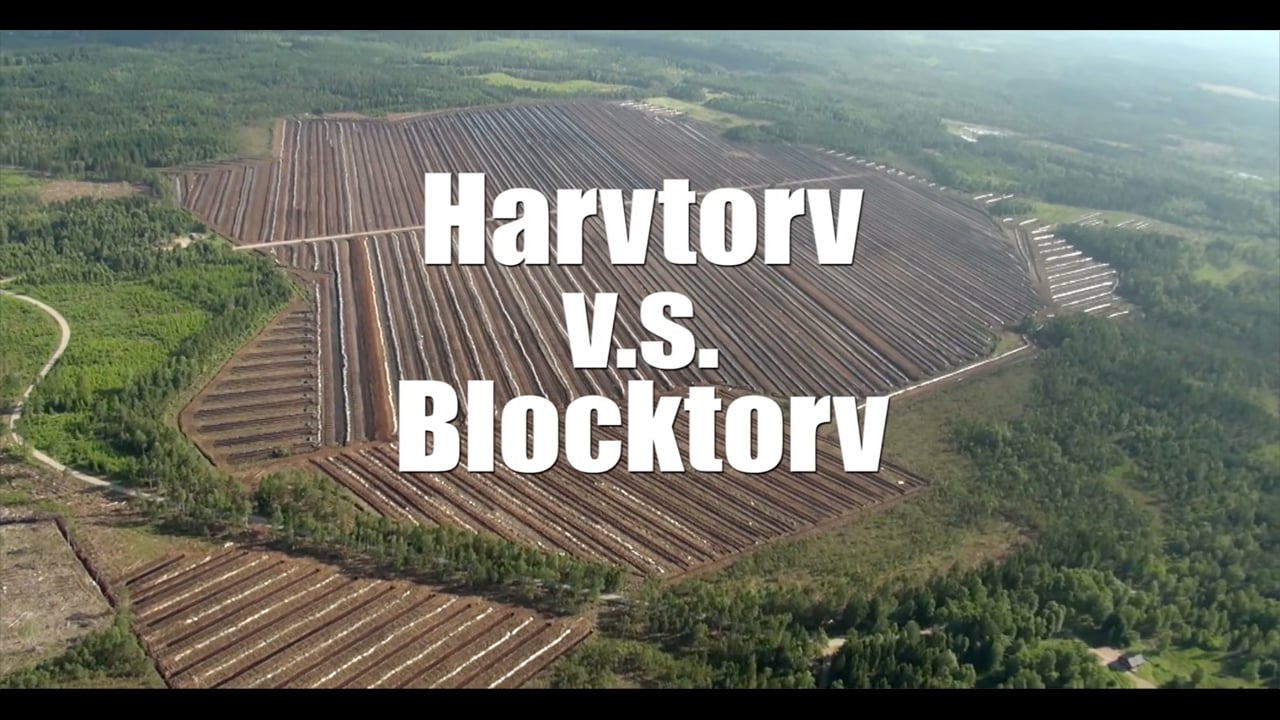 Harvtorv_Blocktorv