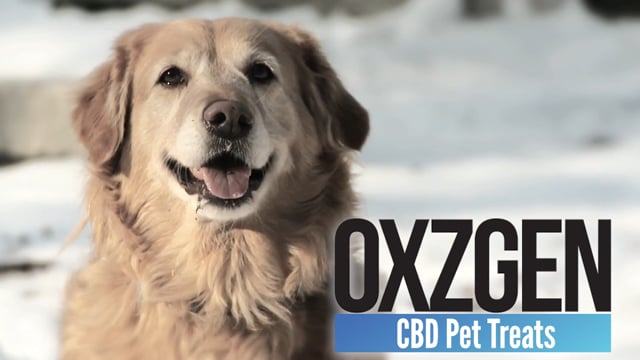 3360OXZGEN Pet Treats and Pet Spray Sizzle Video
