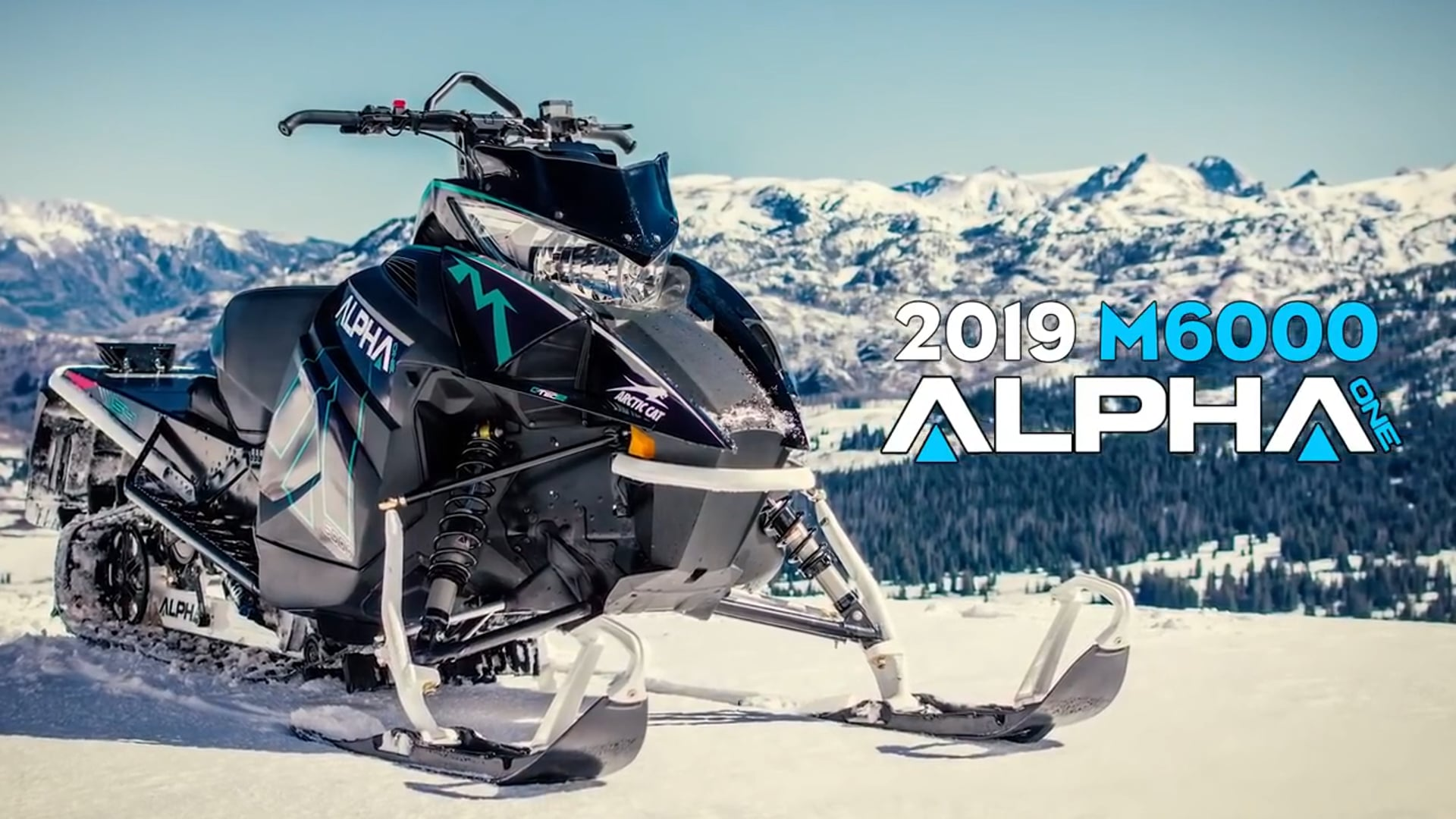 Country Cat - Arctic Cat 2019 M 6000 Mountain Cat Alpha One