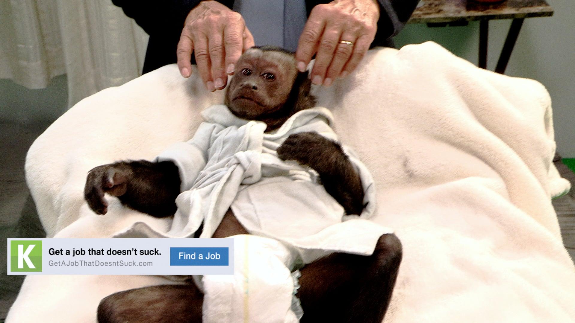 Kelly Services_Monkey Massage