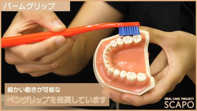 歯ブラシの正しい持ち方知ってますか?