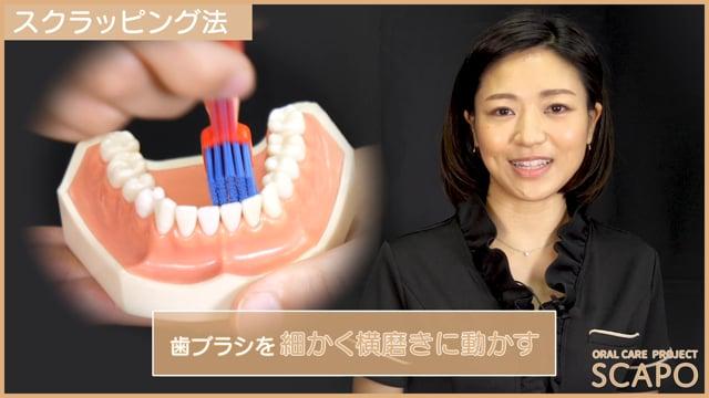 歯みがきの仕方~スクラッピング法~