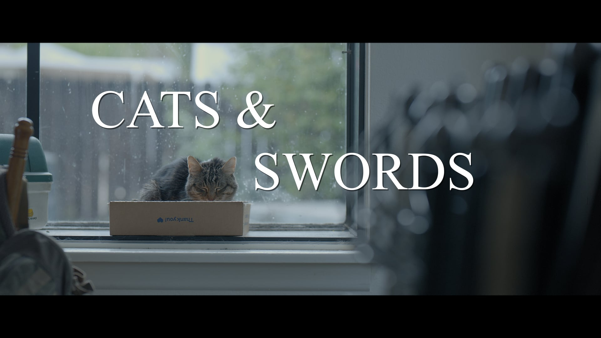 Cats and Swords Private Festival Screener