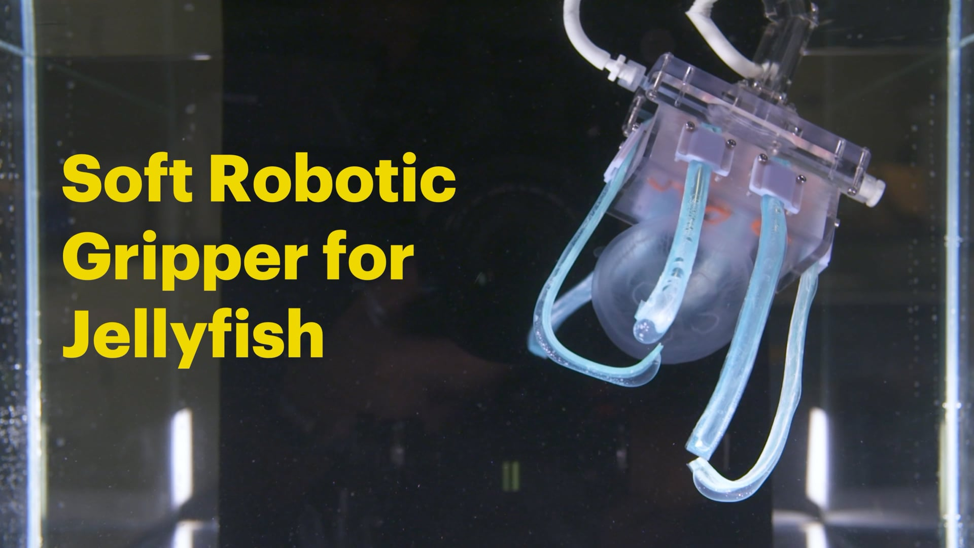 Soft Robotic Gripper for Jellyfish