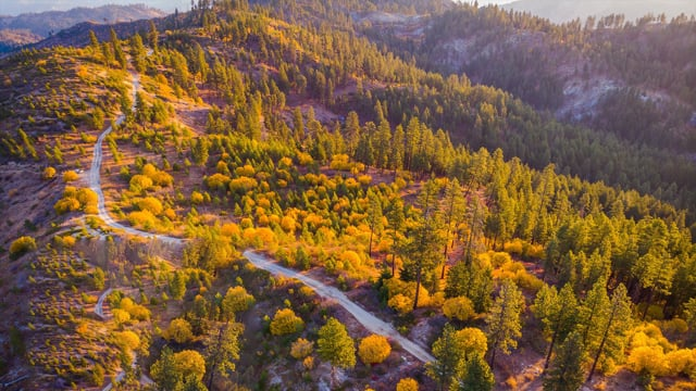 Mountain Home Road. Autumn Views from the Air