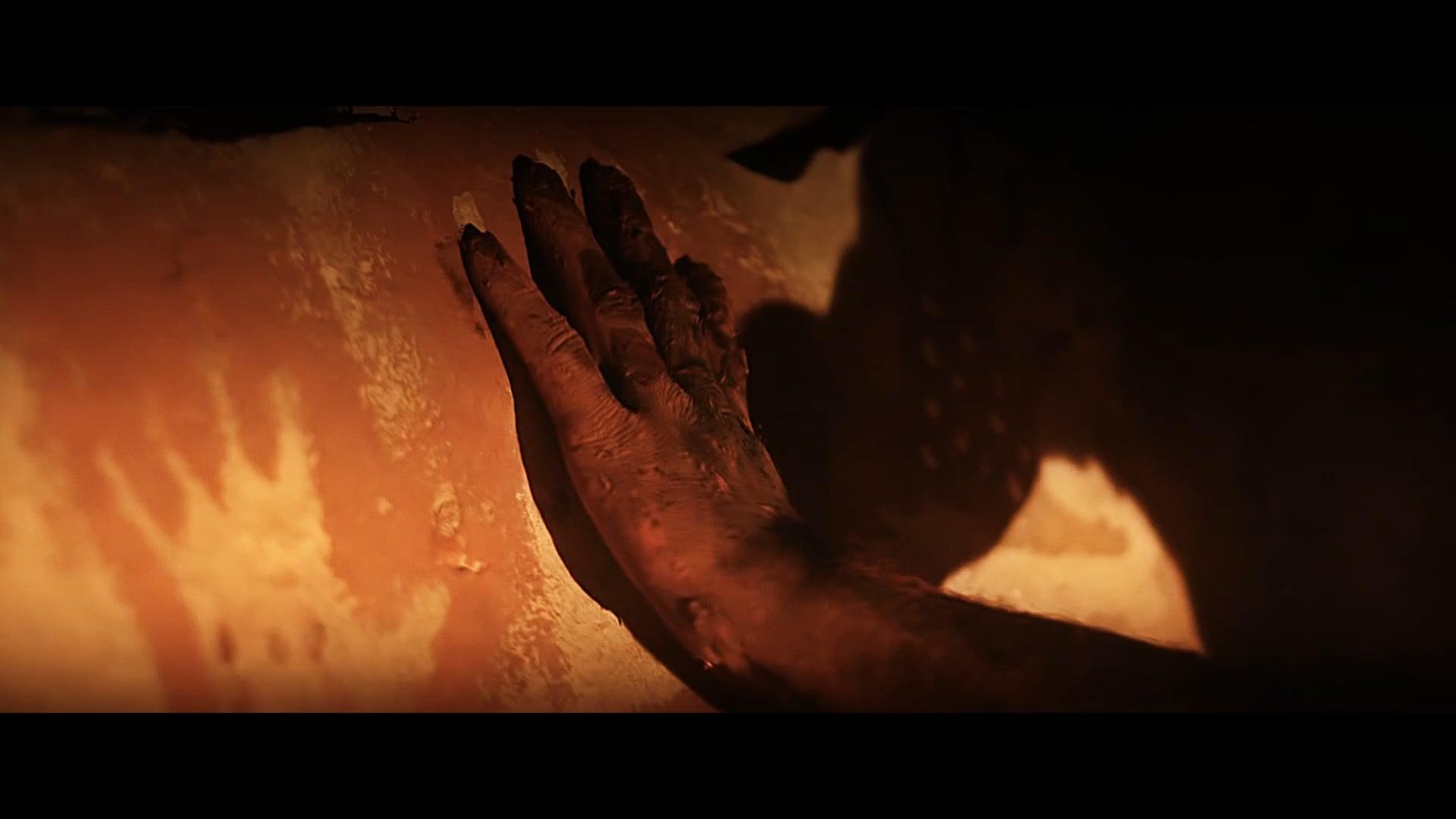 Human-Cannabis I: Sonnet 27 (2013) Trailer