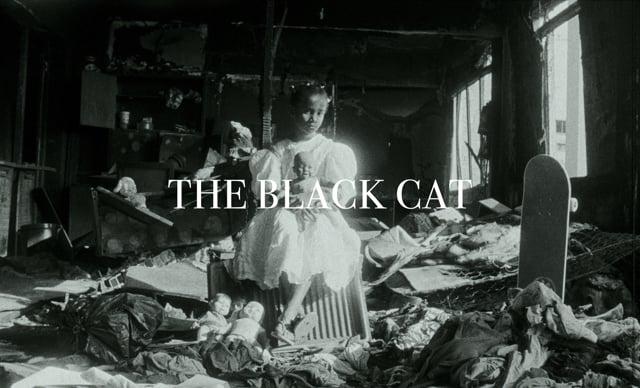 THE BLACK CAT | Short Film