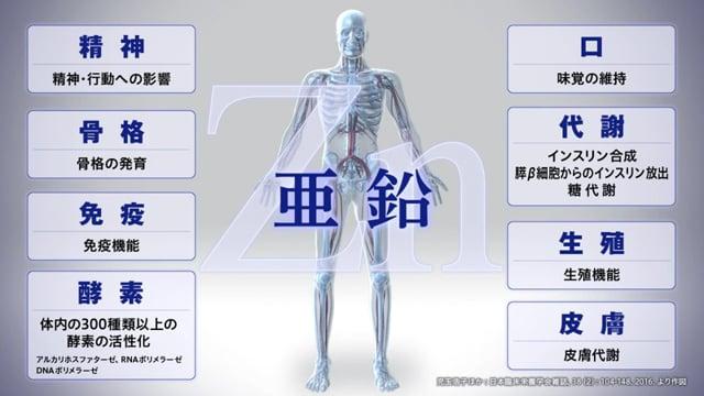 川村 龍吉:亜鉛不足によって生じる皮膚炎発症のメカニズムを探る