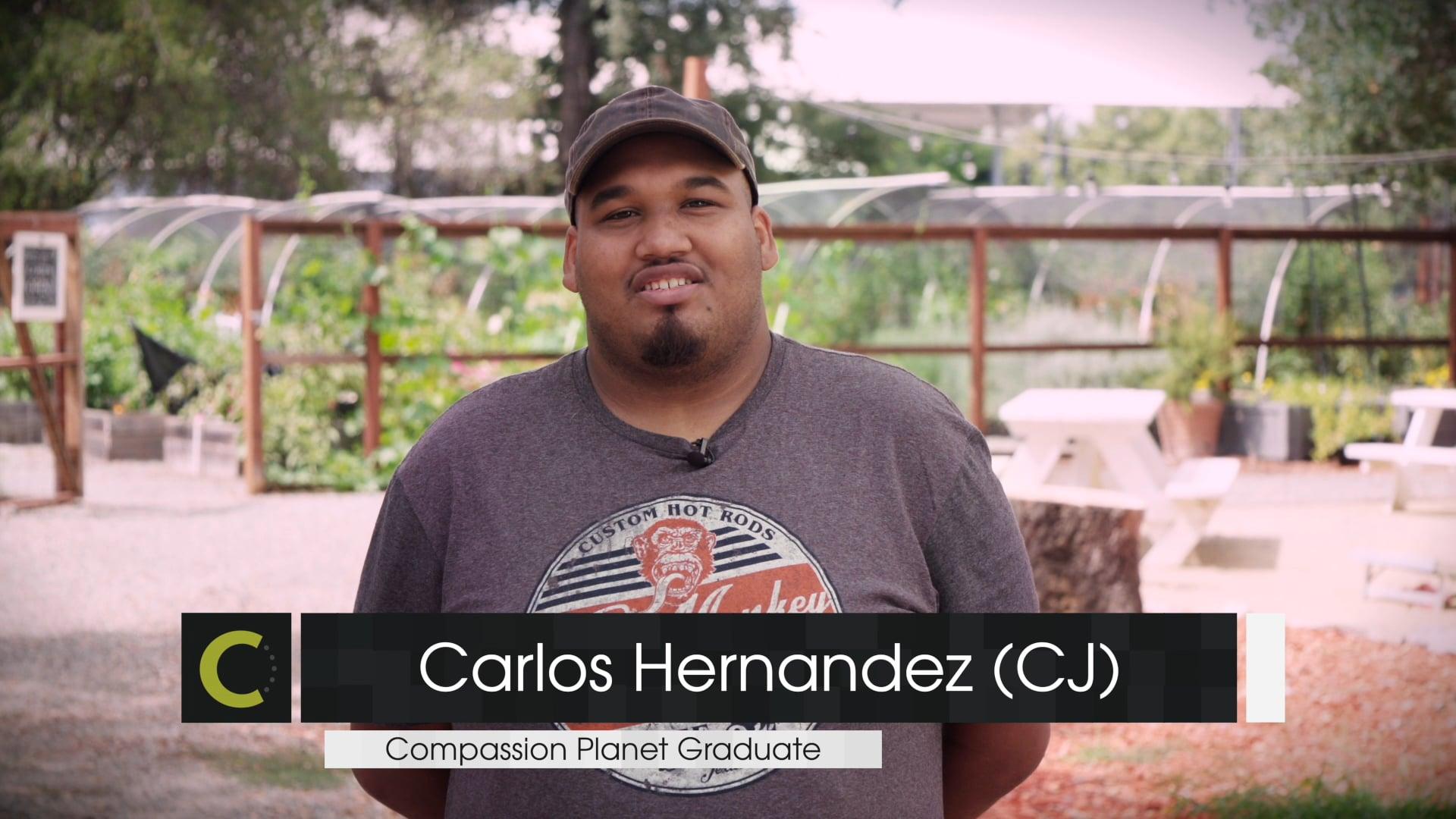 Compassion Planet Testimonials