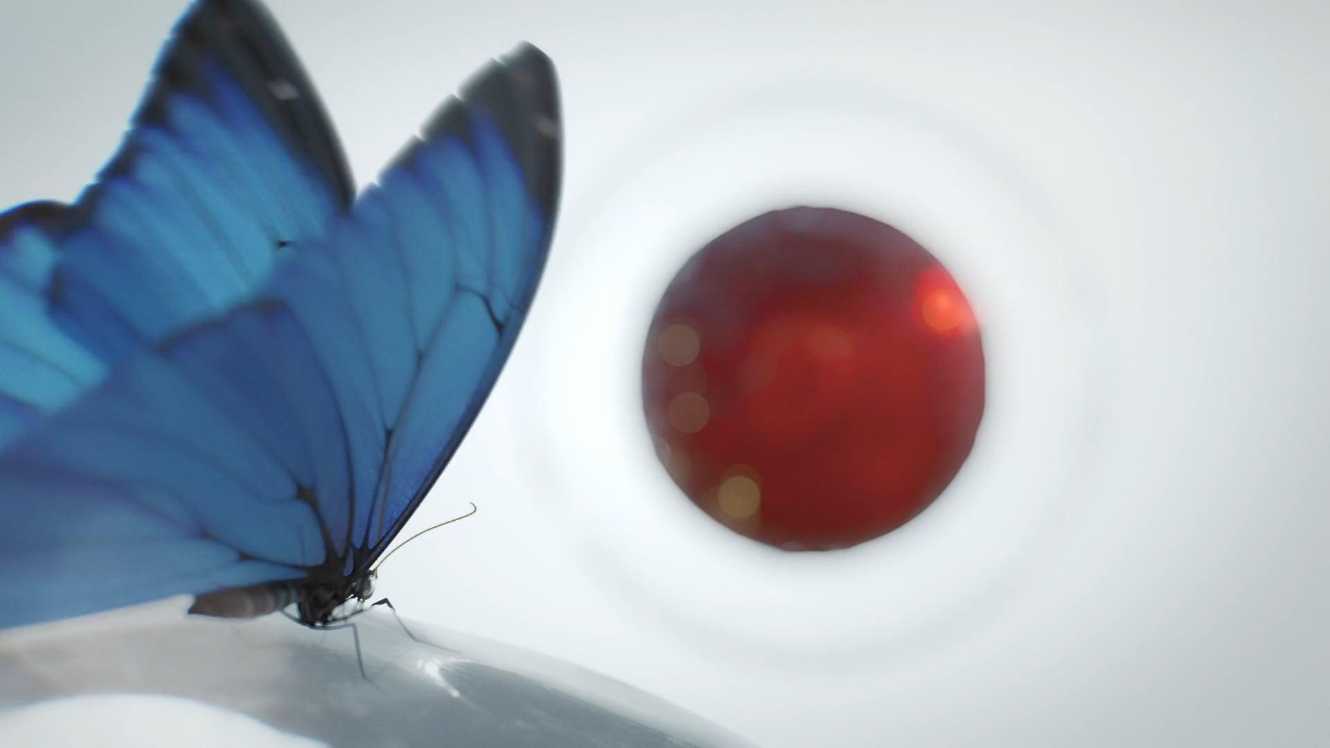 MaxCyte, Magic Butterfly
