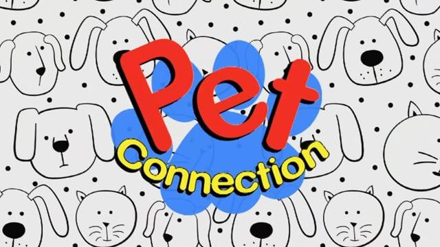 Pet Connection - Lizbeth