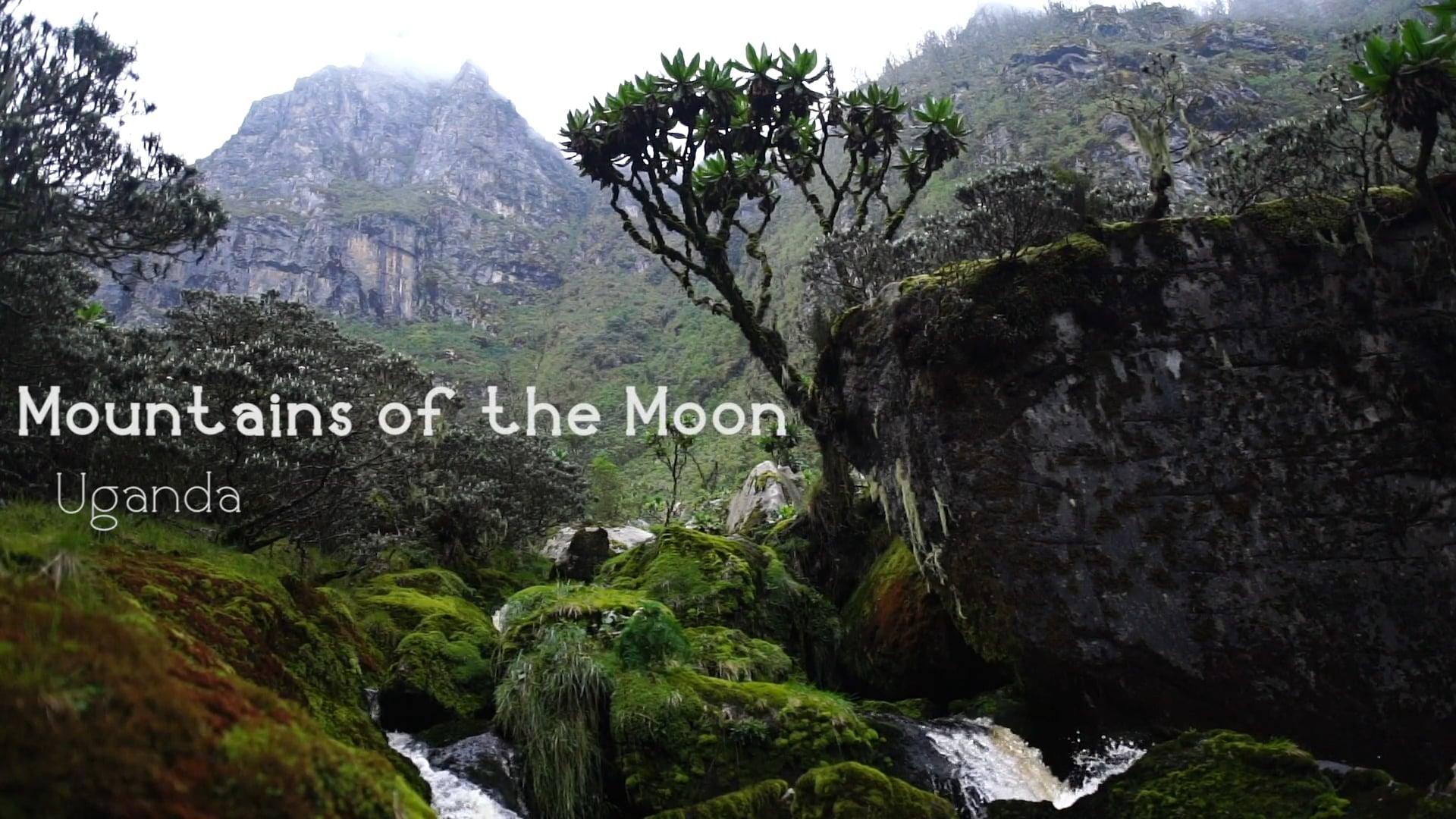 Rwenzori Mountains of the Moon