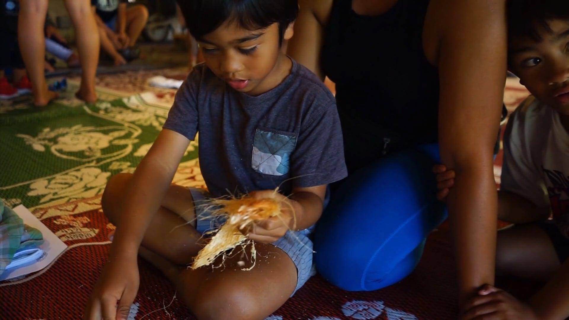 Coconut Rhinoceros Beetle - a Threat to the Indigenous Hawaiian Culture