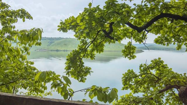 Bakota - The Flooded World. Podilski Tovtry National Park, Ukraine
