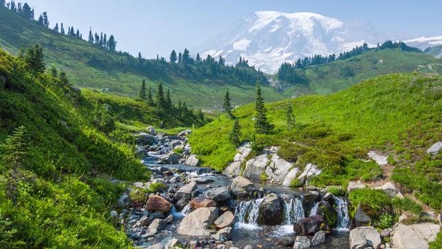 Pacifying Stream near Mt. Rainier - 4K HDR