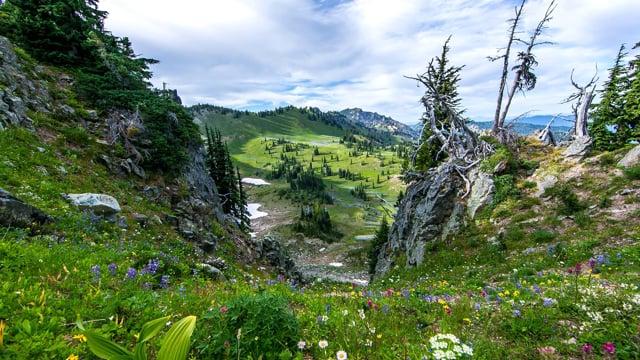 Mount Rainier National Park-2