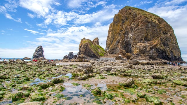 Pacific Northwest-1. Coastal Oregon