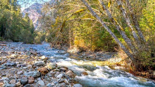 Nooksack River, Mt. Baker Area