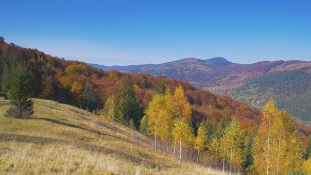 Autumn in the Carpathians