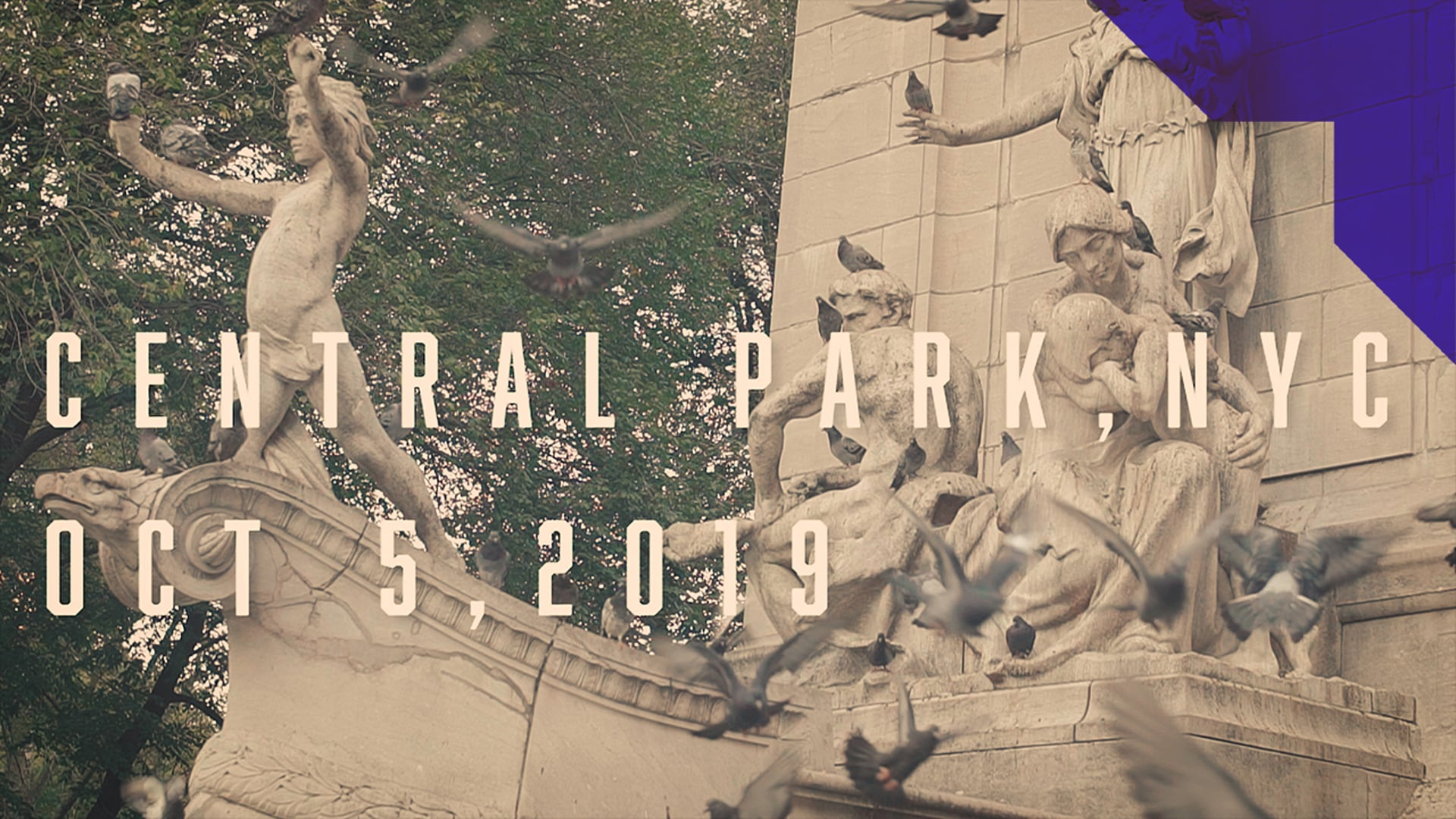 Central Park NYC 2019