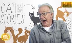 Trader Joe's Leaks Plans for Cat Advent Calendar