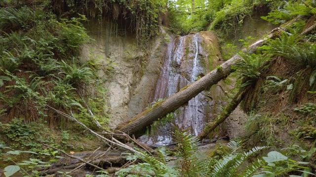 Coal Creek Natural Area Waterfall