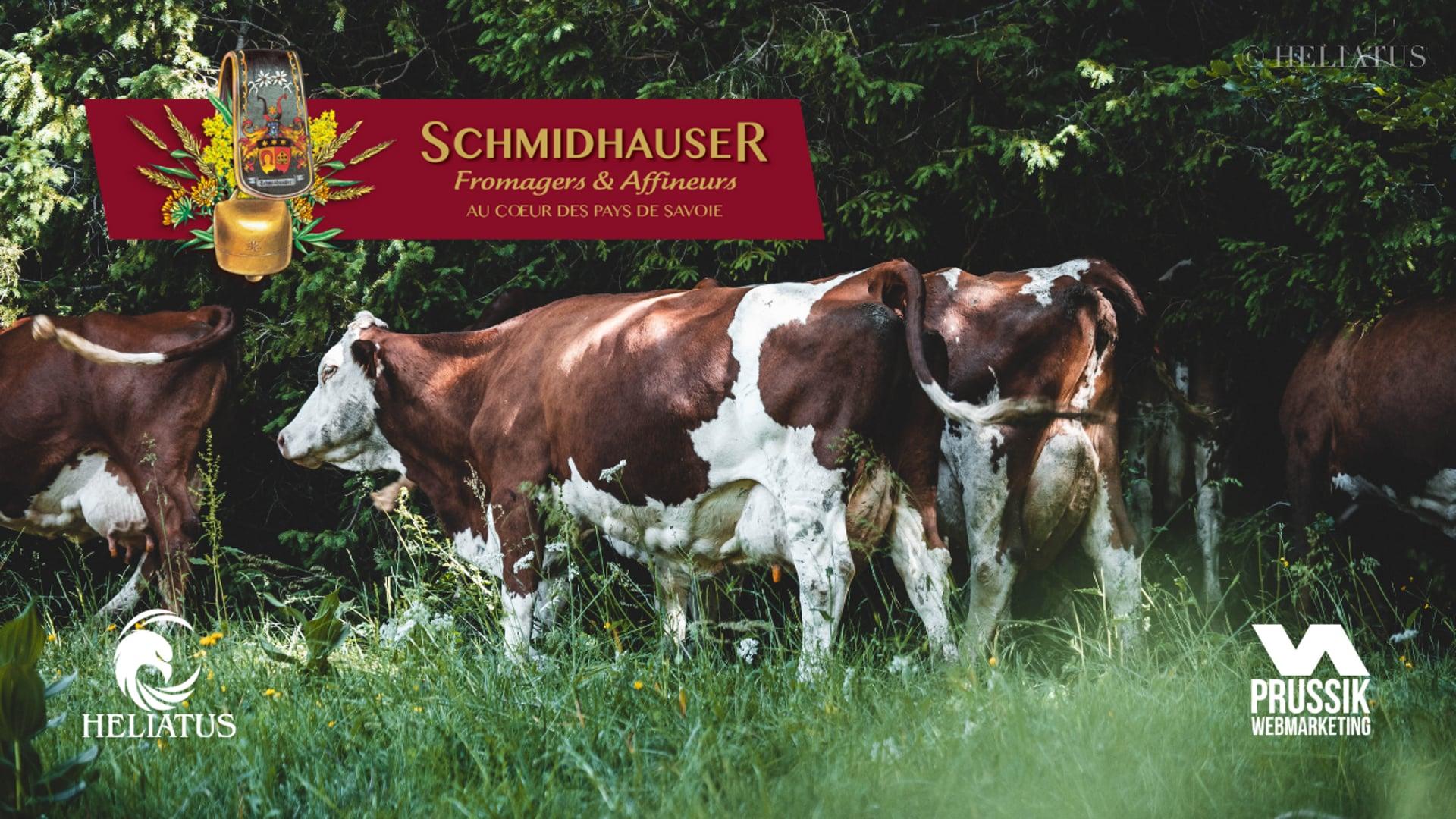 SCHMIDHAUSER -