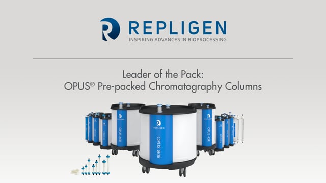 Leader of the Pack: OPUS® Pre-packed Chromatography Columns