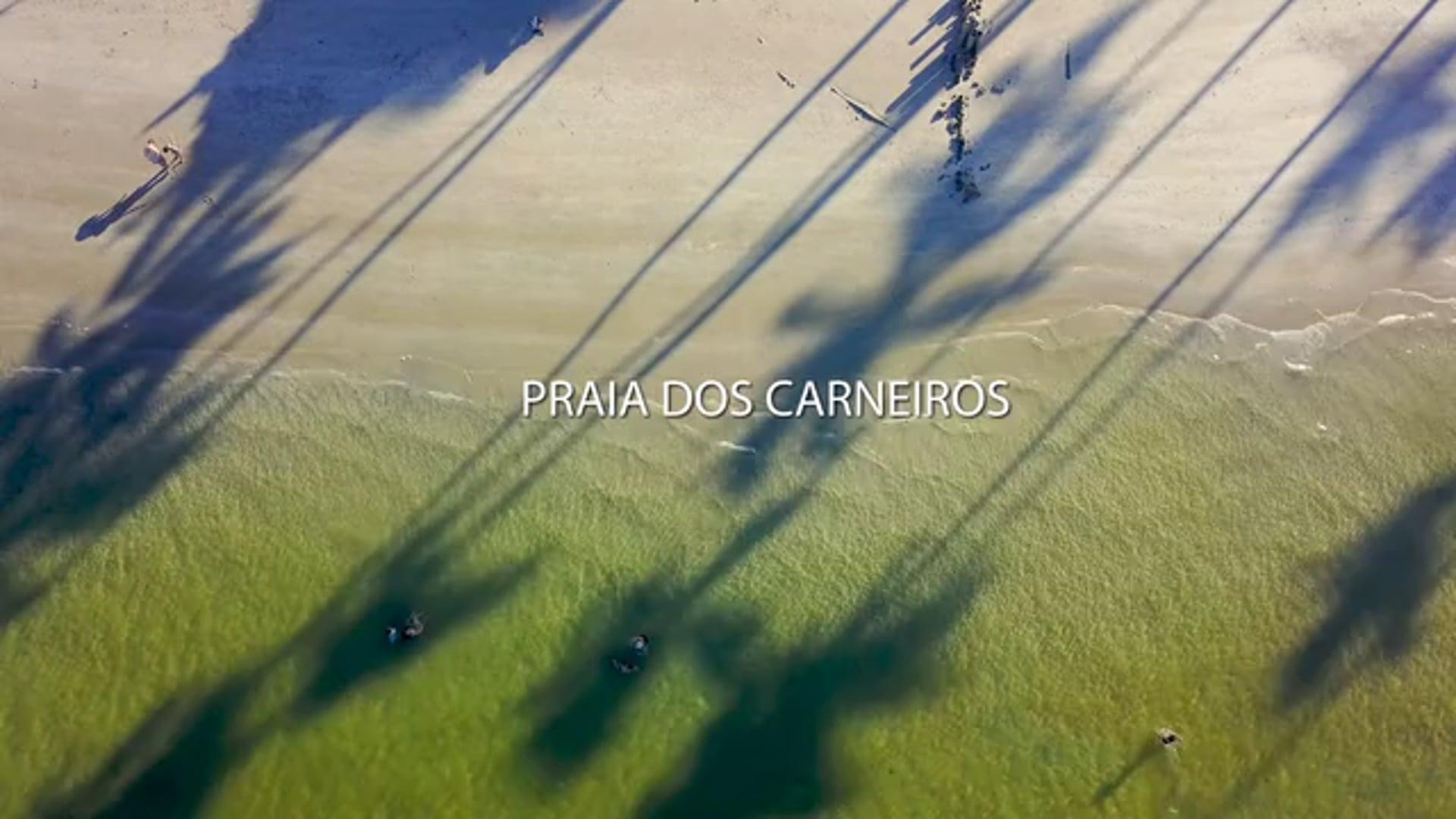 Praia dos Carneiros MINUTE
